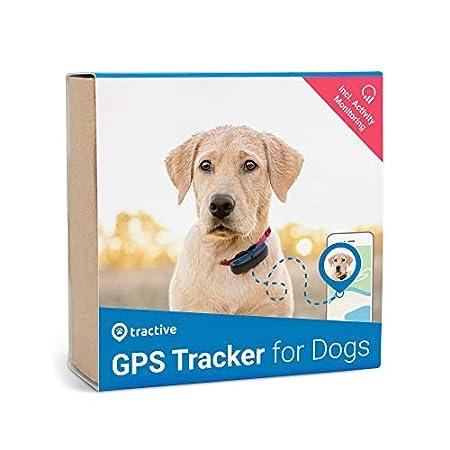 Tractive GPS Tracker für Hunde mit Aktivitätstracking - Leichter und wasserfester Peilsender mit Echtzeit GPS-Ortung