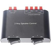 Adwits Caja selectora del conmutador de Altavoz de 2 Canales Adwits con Terminal Claps 150 W RMS por Canal, Negro