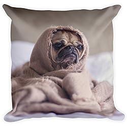 """Carlino en toalla Cojín 45x 45cm, diseño de perros, divertido, """"("""", funda de cojín, almohada, regalo, ideal para regalar, sofá, sofá cojín, suave, muy suave, grande, 45x 45cm"""