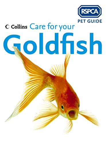 care-for-your-goldfish-rspca-pet-guide