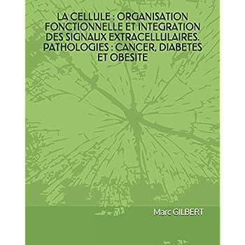 LA CELLULE : ORGANISATION FONCTIONNELLE ET INTEGRATION DES SIGNAUX EXTRACELLULAIRES. PATHOLOGIES : CANCER, DIABETES ET OBESITE.