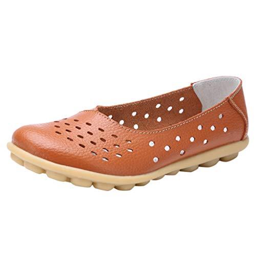 CixNy Damen Sandalen Flache Knöchel Schnalle Zehentrenner Flip Flop Sommerschuhe Leder Casual Elegant Breathable beiläufige Loch-Schuhe große Größe ()