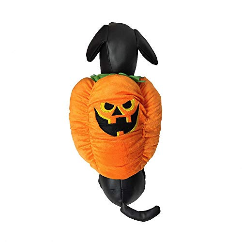 Lustige Hund Outfits - FZ FUTURE Kleidung Haustier Outfit, Halloween