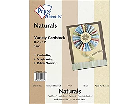 Accent Design Paper Accents ADP8511.1066 Variety Pack 8.5x11