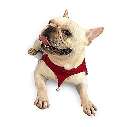 Medium Hunde Kostüm - WEATLY Urlaub Geschenk für Haustiere Weihnachten