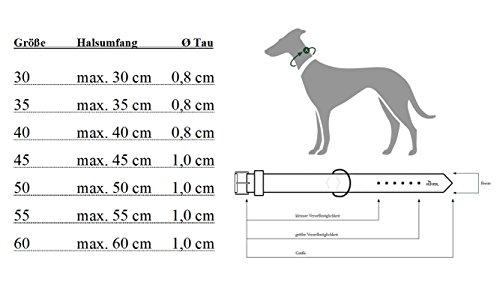 Hunter Dressurhalsung Freestyle Schwarz Größe: 50 cm - 2