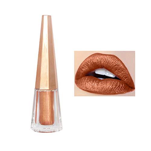 DaySing Lipstick Lèvres Lip Gloss,Rouge à LèVres Mat Brillant Maquillage De Longue DuréE Rouge à LèVres ImperméAble Brun Pigment Effet Durable Étanche Brillant À Lèvres