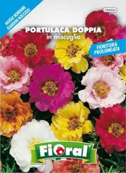 Fioral PORTULACA DOPPIA IN MISCUGLIO - Sementi in busta