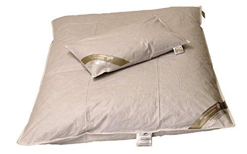 Betten Hofmann Baby Kinder Winter Daunenbett ungesteppt 100x135 cm Daunendecke + 40x60cm Set