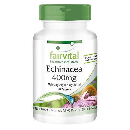 Echinacea Kapseln - 400mg Echinacea purpurea Pulver pro Kapsel - HOCHDOSIERT - VEGAN - 90 Kapseln