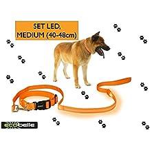 ECOBELLE® set Collar de perro + Correa de perro luminoso LED, Alta Visibilidad y Securidad por la noche, 3 Modos de luz, USB Recargable (2 cables USB incluidos), color NARANJA. Tamaño correa 1.20m, Tamaño collar MEDIO 40-48cm (regulable)