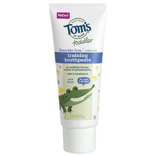 toms-of-maine-toddlers-fluoride-free-natural-toothpaste-mild-fruit-175-ozpack-of-2-by-toms-of-maine