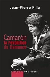 Camarón, la révolution du flamenco (Essais) (French Edition)