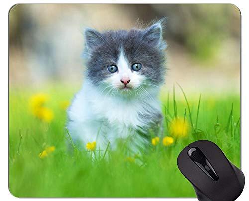 Gaming Mouse Pad Custom, Katzentier niedliches Katzengras Home Office Computerzubehör Mousepads
