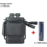 WASAGA 18650 Battery Pack, 5V USB 8.4V DC Banco de energía al Aire Libre Impermeable con 6pcs 3000mAh Batería 18650 Recargable Ciclismo, la Pesca, el Campamento, el Respaldo de energía de Escalada
