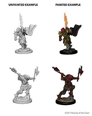Nolzur's Marvelous Unpainted Minis: Dragonborn Female Fighter