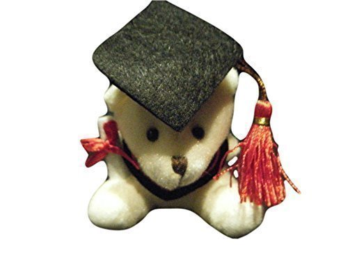 cute-universita-regalo-laurea-con-orsetto-morbido-by-fat-catz-copy-catz