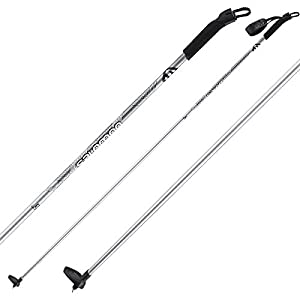 Salomon Escape Alu Pole