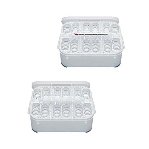 Magideal 2 in 1 scatola di incubazione cm rettile uovo contenitore di plastica cova con 12 uovo foro