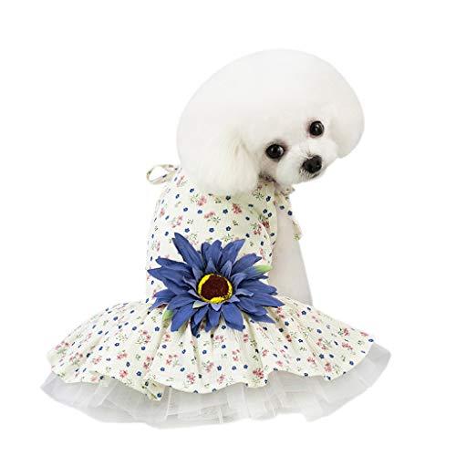 Bubble Rock Sommer Sun Blume Sling Rock Kleid Hundekostüme Pet Kleidung Kleid Hund Niedlich Kleid Prinzessin Blumen Kleider für Hunde Hundebekleidung Kleine Katze Hunde (XL, Blue) Blue Bubble Kleid