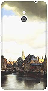 The Racoon Lean View of Delft hard plastic printed back case / cover for Nokia Lumia 1320