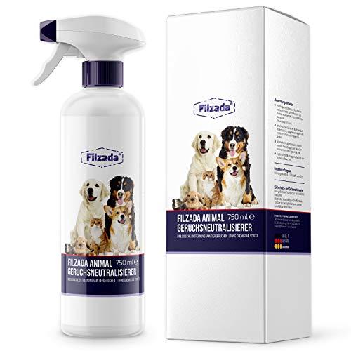 Filzada ® Animal - Tier Geruchsentferner/Geruchsneutralisierer - Idealer Enzymreiniger Für Katzenurin Und Tiergerüche (Geruchskiller)