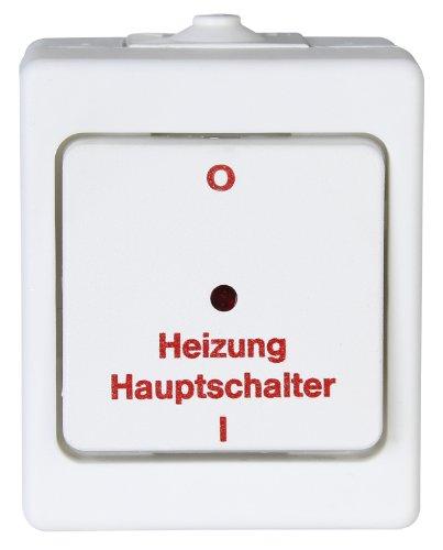 Kopp 567302005 Aufputz Feuchtraum Heizungshauptschalter, IP44, Standard