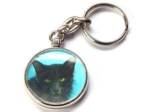 Moody Motorz Javanese Katze Kätzchen Hochwertig Chrom Schlüsselring Bild Beide Seiten -