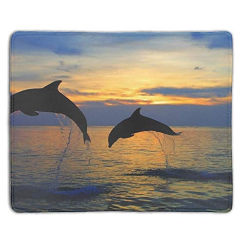 meniony Gaming Mouse Pad,Mouse Pad Unique Printed Mousepad Non-Slip Rubber Curacao Dolphin - Curacao Slip