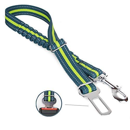 TapTap Hundegurt mit elastischer Rückdämpfung in auffälliger Farbe und reflektierend - Premium Qualität - Länge: 50-80cm (Kurze Ruckartige)
