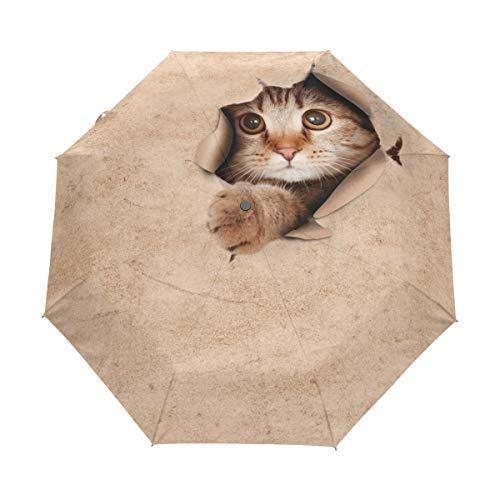 GraciasU - Paraguas Doble Capa diseño Gato Caja