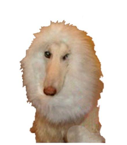 Demarkt Hundekostüm Löwenmähne für Hunde ()