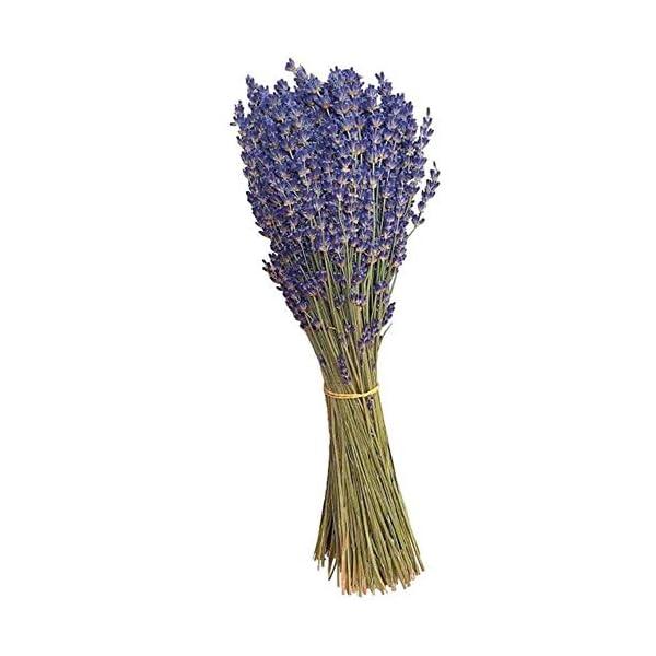 YF-1 Ramo de Flores secas Naturales de Lavanda para Bodas, Fiestas, decoración del hogar, Hecho a Mano, Flores Artificiales