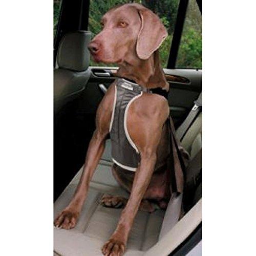 Ancol Auto-Sicherheitsgeschirr für Hunde, groß, Schwarz Größe