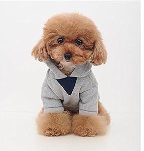 chiot manteau chien vêtements pour animaux sweat à capuche vêtements, gris