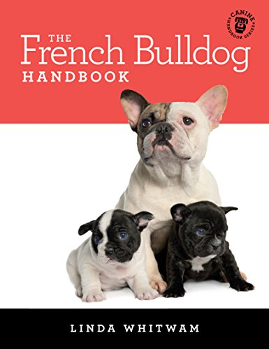 The French Bulldog Handbook: The Essential Guide For New & Prospective Frenchie Owners (Canine Handbooks) (English Edition)