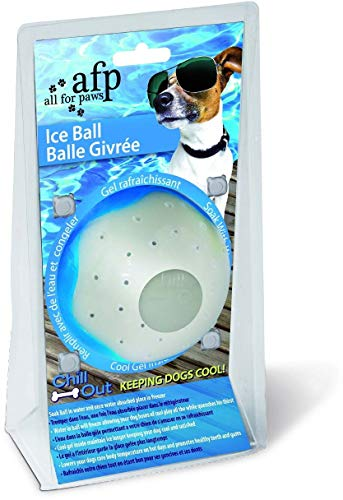 All for Paws Chill Out Ice Ball