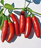 BSNKRY Pepper Seed, Serrano, Heirloom, Organic, Non Gmo, 100 Seeds, Hot Chille Peppers