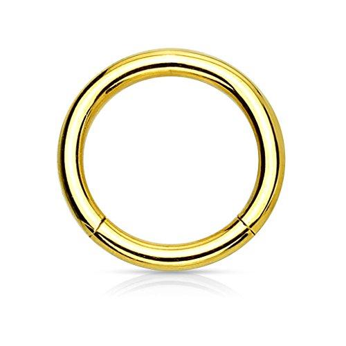 eeddoo 1,2 mm - 6 mm - Gold Steel - Segmentring (Piercing Ring Schmuck Smooth Closure Ring gold)