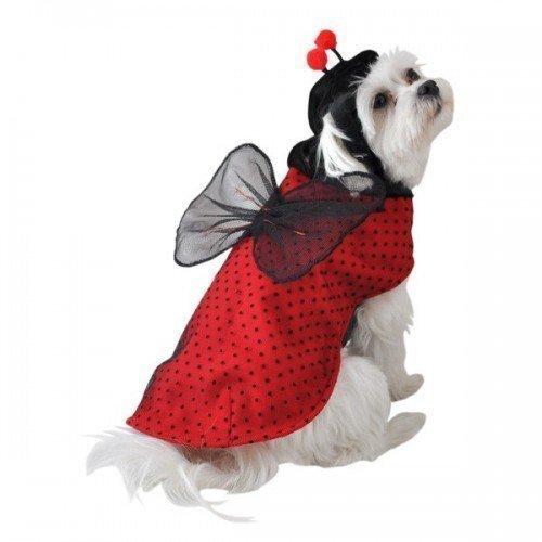 Fancy Me Haustier Hund Katze Marienkäfer Halloween Kostüm Kleid Kostüm Outfit Kleidung XS Klein Mittel - Extra ()