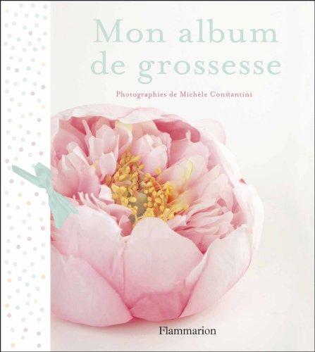 Mon album de grossesse par Michèle Constantini