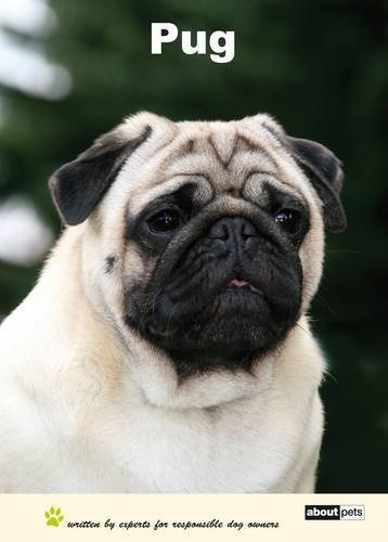 Pug: Dog Breed Expert Series by About Pets (2010-03-24)