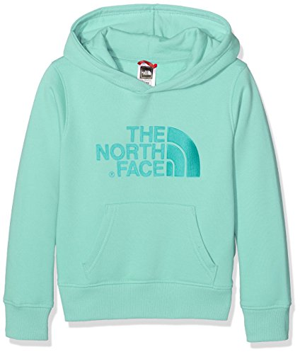 north-face-mens-y-100-drew-peak-plv-hd-hoodie-green-ice-green-medium