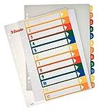 Esselte Rubrica, Formato A4 Maxi, Pagina indice stampabile al PC, Polipropilene, Multicolore,100214