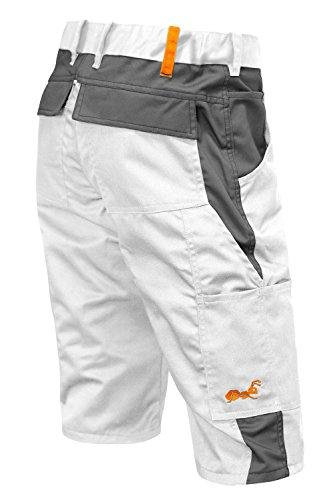 strongAnt® - Arbeitshose Männer Kurz Malerhose Berlin Sommer Maler Shorts - 100% BW - Größe: 44, Farbe: Weiß-Grau - Flexibler Bund
