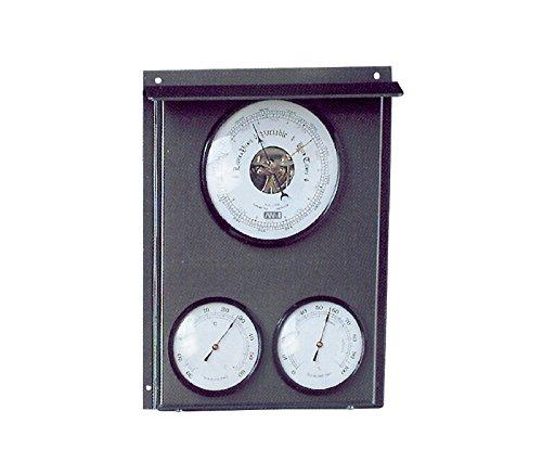 Estación meteorológica exterior, Barómetro y estación meteorológica, con higrómetro, barómetro...