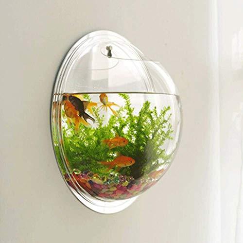 JIANGU Aquarium, Acryl, hohe Transparenz, Wand-Aquarium, Vase