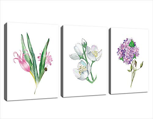 Hydrangea Giclee Canvas Art (3P 30x 40cm)