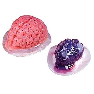 Moules effrayants pour cerveau et cœur en gélatine idéal pour Halloween