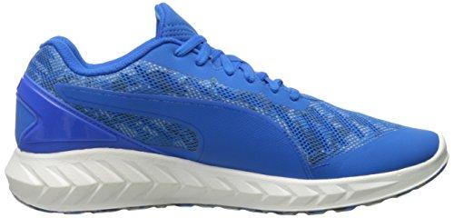 Puma Ignite Ultimate Cam Textile Laufschuh Electric Blue/Peacoat/Quarry